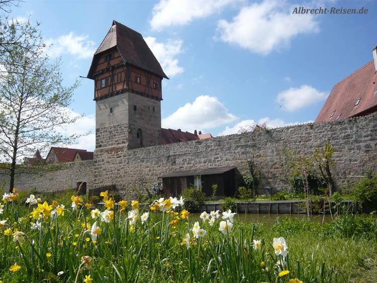 Stadtmauer Dinkelsbühl